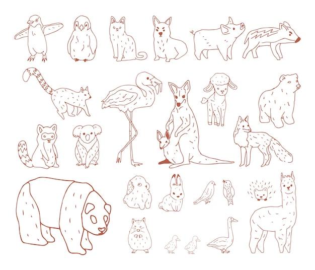 Vector de varios tipos de animales.