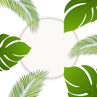Vector verano tropical deja fondo de marco redondo