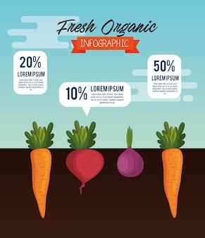 Vegetales orgánicos cultivados en el jardín