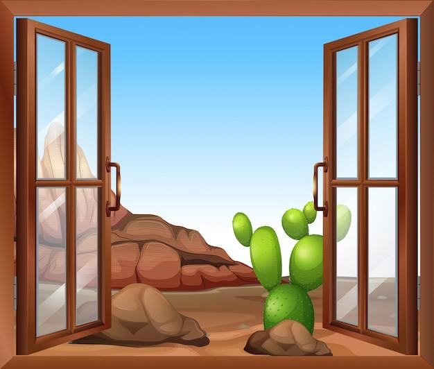 Una ventana con un cactus