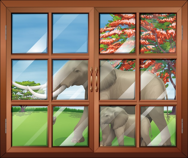 Una ventana cerrada con una vista de los dos elefantes afuera