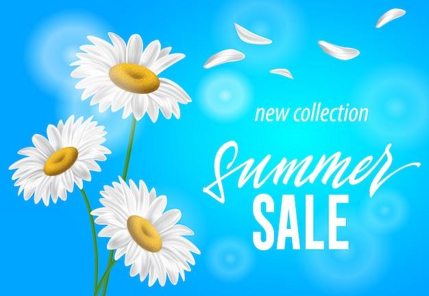 Verano venta nueva colección banner estacional con chamomiles sobre fondo azul cielo.