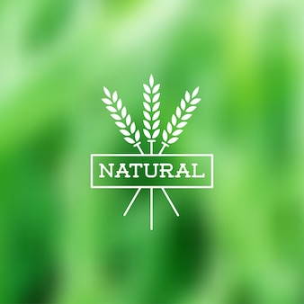 Verde borroso natural