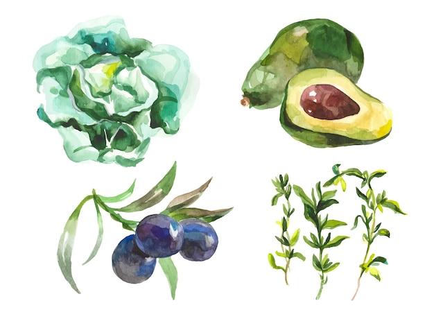 Verduras acuarela aisladas en blanco