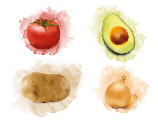 Verduras de acuarela