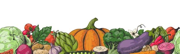 Verduras dibujadas a mano. vegetales de colores marco de patrones sin fisuras de la frontera.