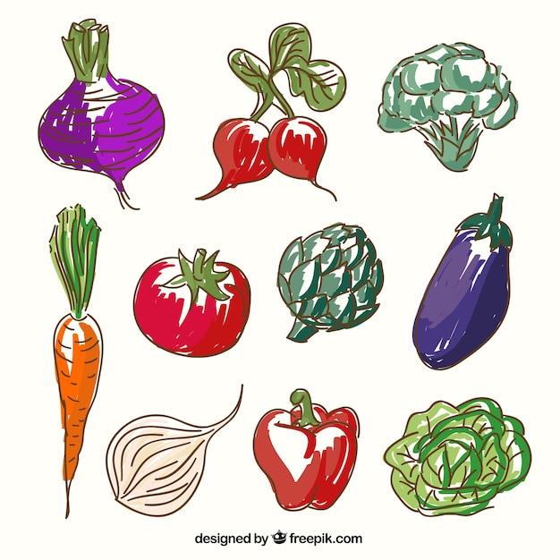 Verduras esbozadas