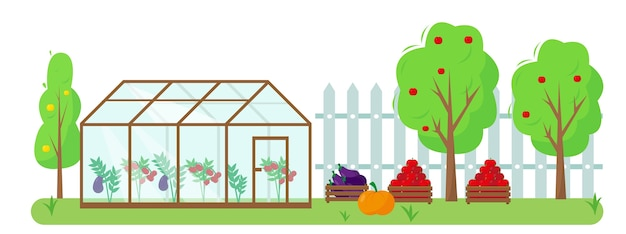 Verduras, frutas e invernadero en el jardín. concepto de jardinería y cosecha. ilustración de banner o fondo de otoño o verano.