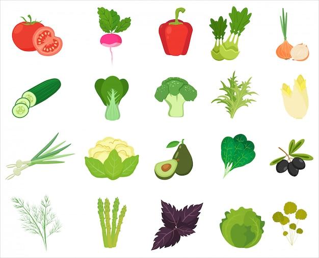 Verduras y hierbas frescas de color iconos planos.