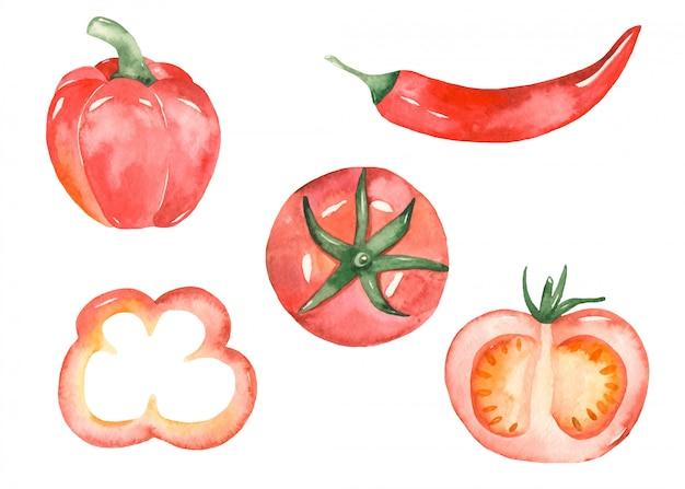 Verduras rojas en estilo acuarela