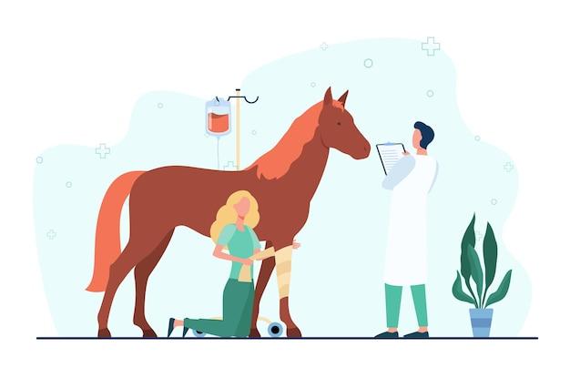 Veterinario dando tratamiento a caballo