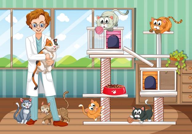Veterinario trabajando en un hospital de animales con muchos gatos.