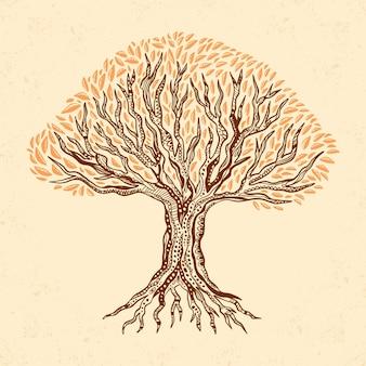 Vida arbol dibujada a mano