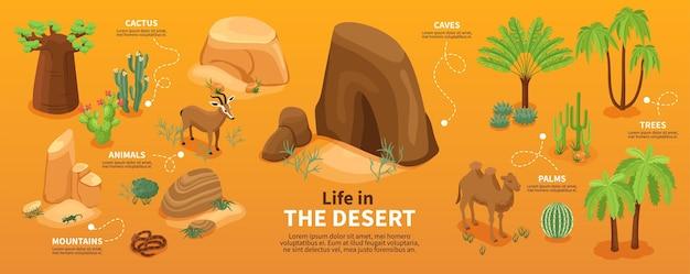 La vida en los elementos del desierto.
