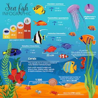 Vida marina animales plantas infografía con tipos de peces sus tamaños y descripciones