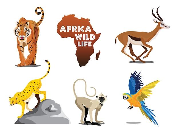 Vida salvaje africana