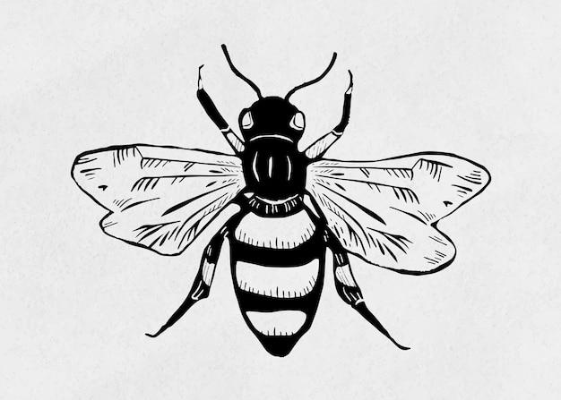 Vintage, abeja, insecto, linograbado, plantilla, patrón clipart