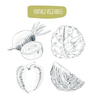 Vintage colecciones de verduras