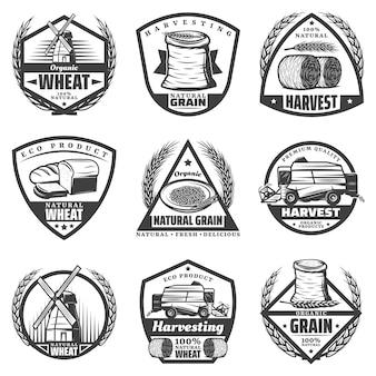 Vintage etiquetas de cosecha monocromáticas con harina de espigas de trigo corona fardos de heno molino de viento productos para hornear cosechadora aislada