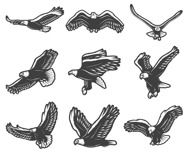 Vintage hermoso conjunto de águilas voladoras