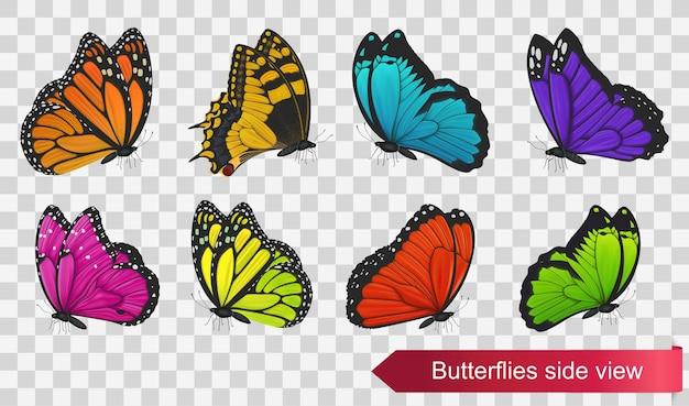 Vista lateral de mariposas aislado sobre fondo transparente. ilustración vectorial