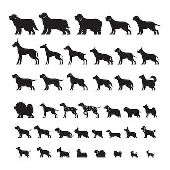 Vista lateral de razas de perros, conjunto de silueta