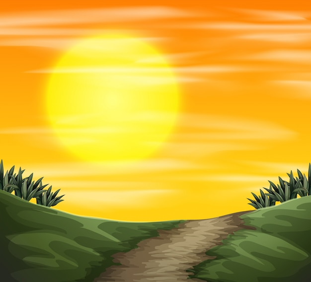 Una vista de la naturaleza puesta de sol