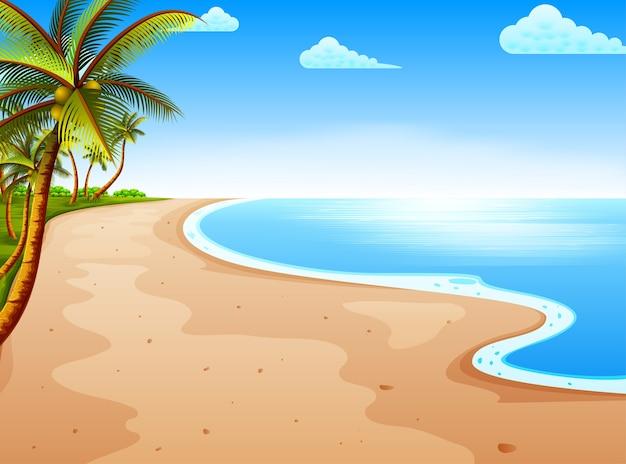 Vista de la playa con el hermoso cielo azul y el árbol de coco.