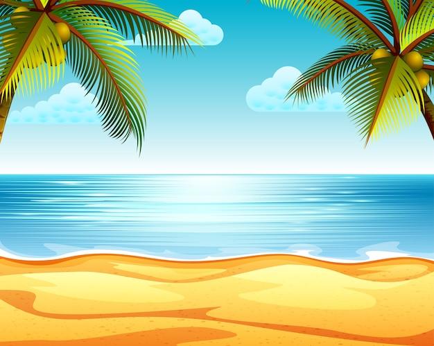Vista de la playa con la playa de arena y dos cocoteros en ambos lados.