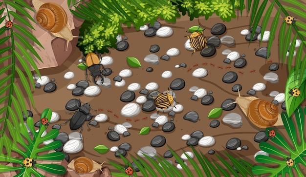 Vista superior de diferentes tipos de insectos en el jardín.