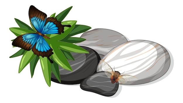 Vista superior de la mariposa y la abeja en la hoja de piedras aislada