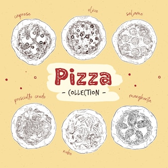 Vista superior de pizza con ilustración de diferentes ingredientes