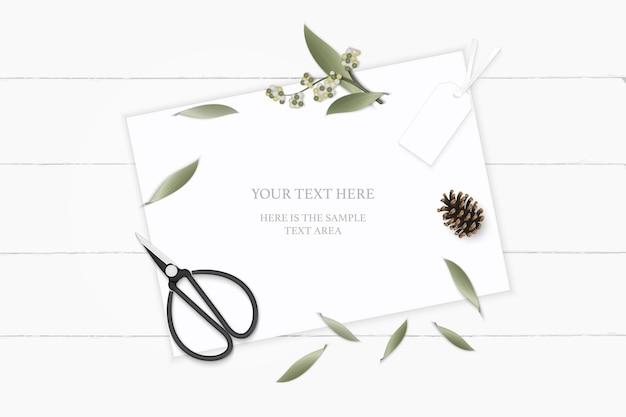 Vista superior plana endecha elegante blanco composición papel jardín botánico planta hoja flor pino cono etiqueta y tijeras de metal vintage sobre fondo de madera.