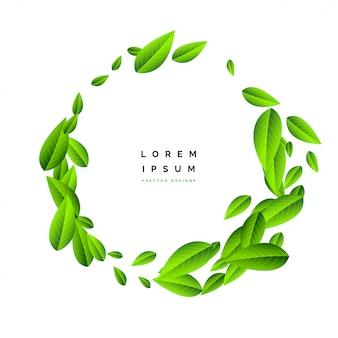 Volando hojas verdes sobre fondo blanco