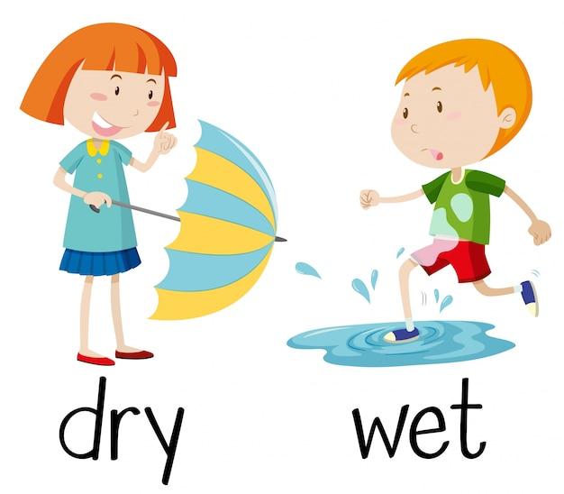 Wordcard opuesto para seco y mojado