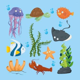 Xxx y animales marinos salvajes en el océano, habitantes del mundo marino, lindas criaturas submarinas, fauna submarina del trópico