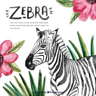 Zebra de acuarela con decoración de flores