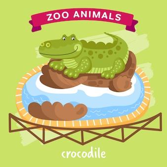 Zoo animal, cocodrilo