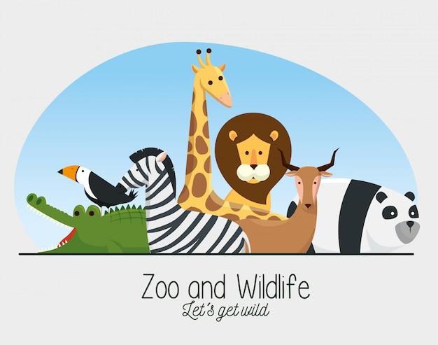Zoo safari reserva de animales salvajes