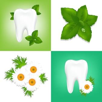 4 gestaltungselemente zum stomatologischen thema