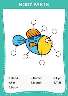 Abbildung des fischvokabularteils des körpers, schreiben sie die korrekten anzahlen der körperteile. vektor