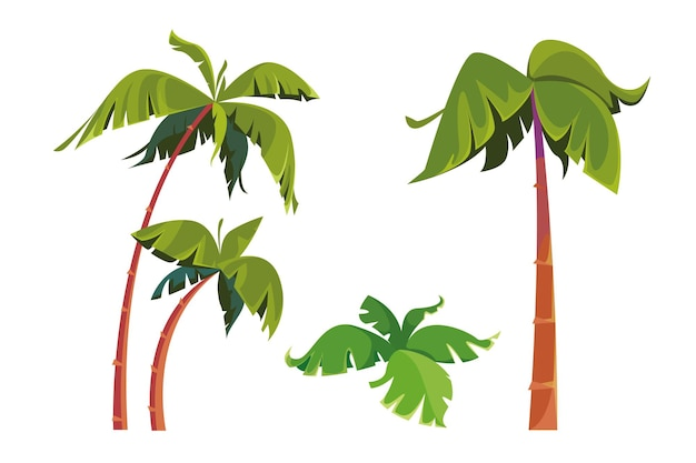 Abbildung einer reihe von palmen hoher schlanker baum der tropen das isolierte objekt