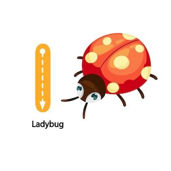 Abbildung getrennt alphabet letter l-ladybug