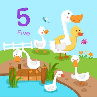 Abbildung von nummer fünf