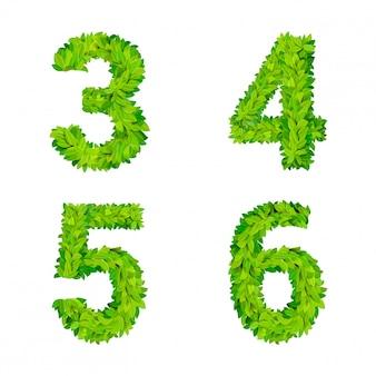 Abc gras verlässt buchstaben nummer elemente moderne natur plakat schriftzug blatt laub laub satz. 3 4 5 6 blattblättrige blättrige natürliche buchstaben lateinische englische alphabet-schriftsammlung.
