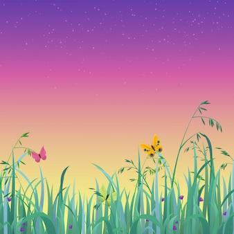 Abenddämmerungsmorgenhimmelgras im vordergrundnaturfrühlingssommerhintergrund.