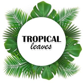Abgerundeter rahmen mit grünen tropischen blättern.