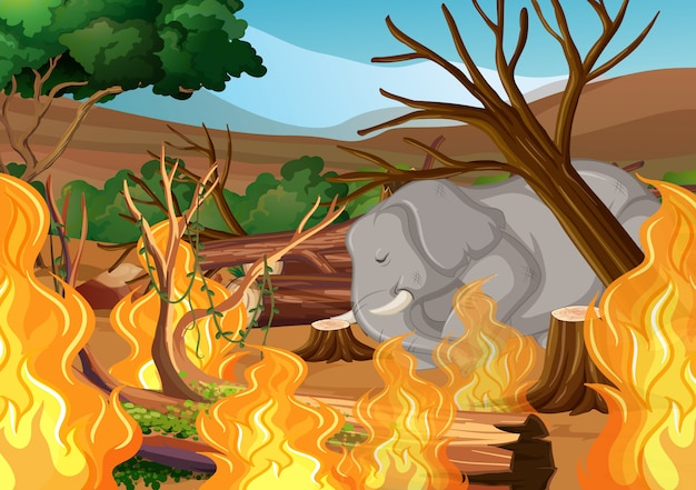 Abholzung mit elefanten und verheerendem feuer