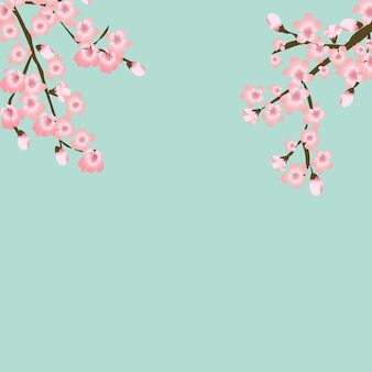Abstrakter blumen-sakura flower japanese natural background