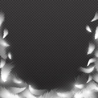 Abstrakter hintergrund mit weißen flaumigen federn. vektor federrahmen. illustration des federvogels, flaumig und der spule, gefiedergrenze